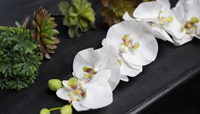 An image of white silk orchids and silk succulents
