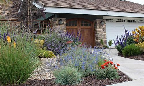 An image of a California Friendly Garden yard