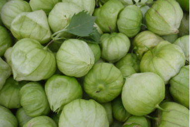 An image of green Tomatillos