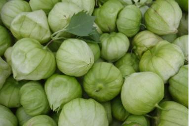 An image of green Tomatillos