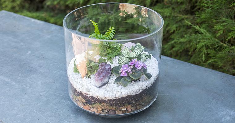 An image of a Geode Terrarium Garden for workshop