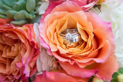 An image of an orange pink rose displaying the wedding rings
