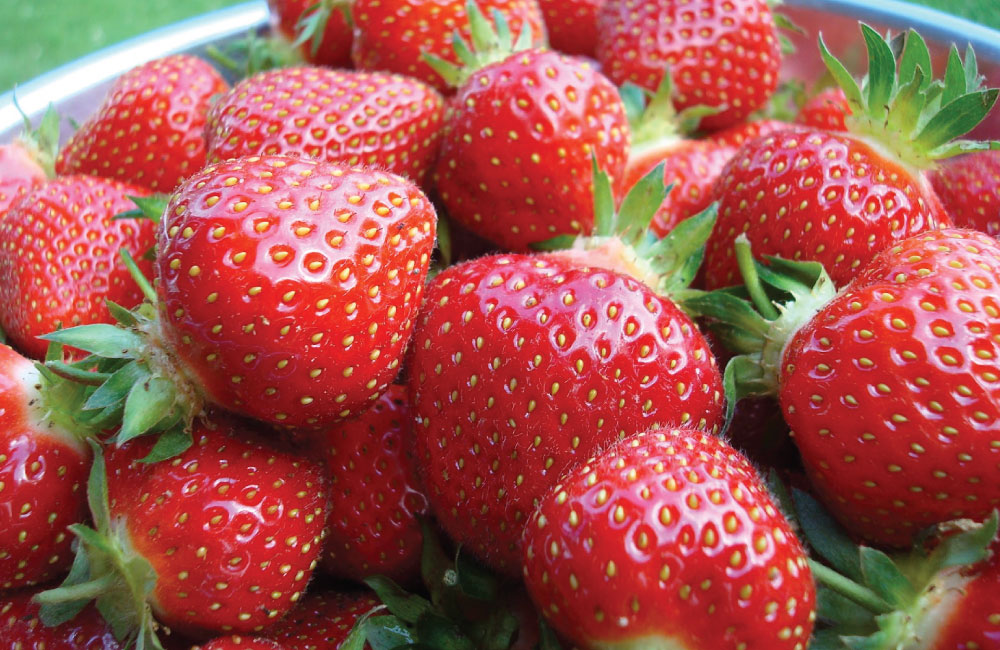 An image of bright red strawberries