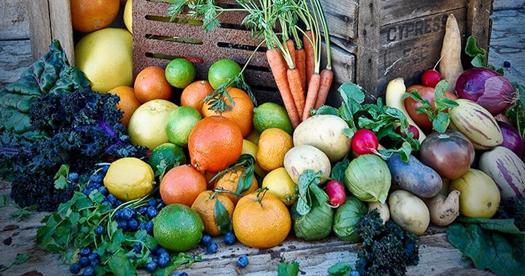 Edible Garden with David Rizzo Image