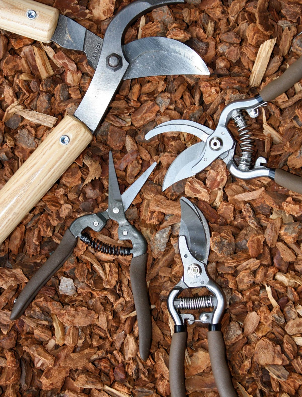 An image of garden clippers pruning shears