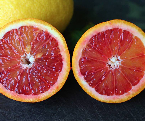 Citrus Fruit from Tree