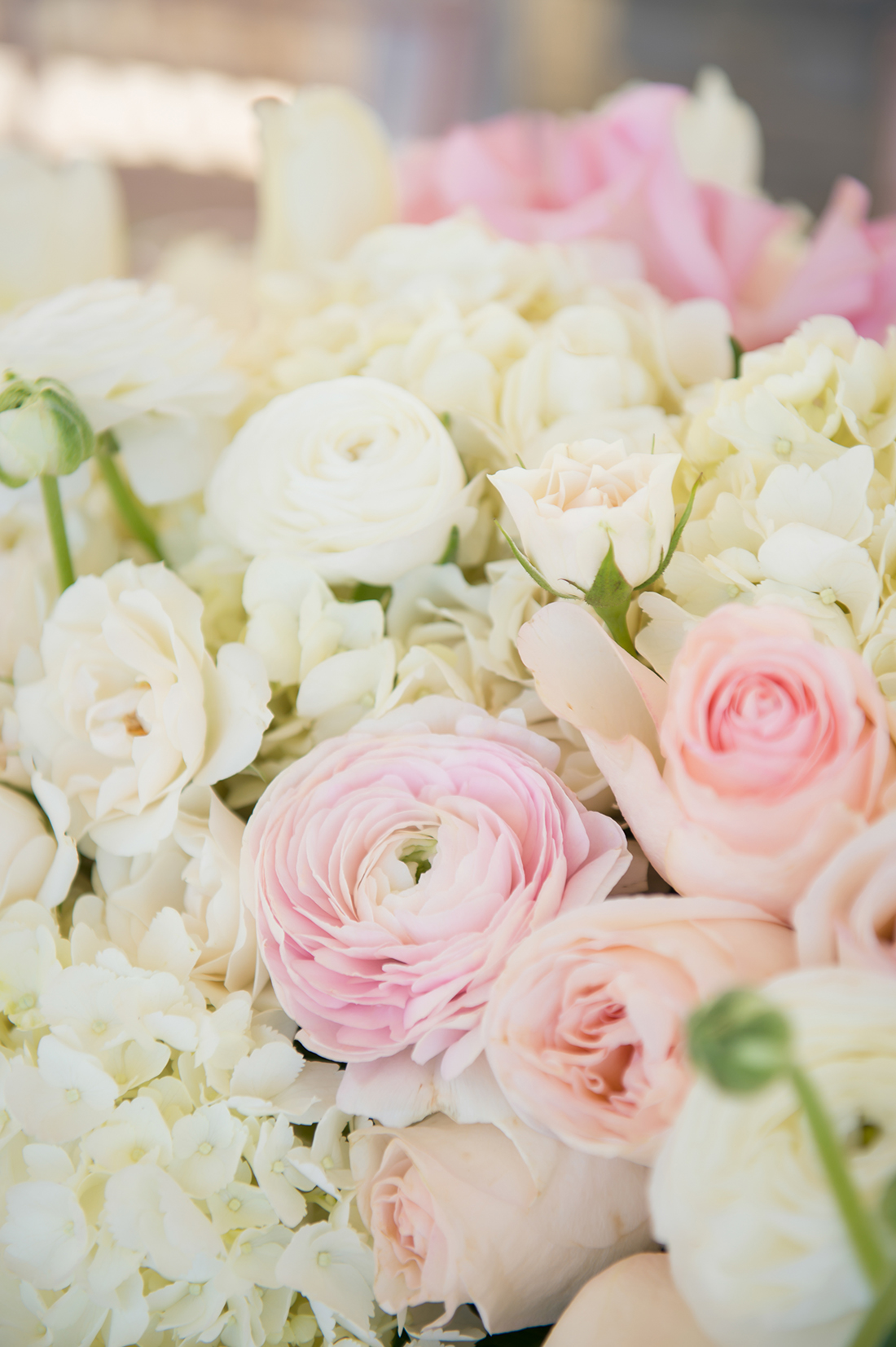 A close up image of white and pink roses for the Something Lovely event