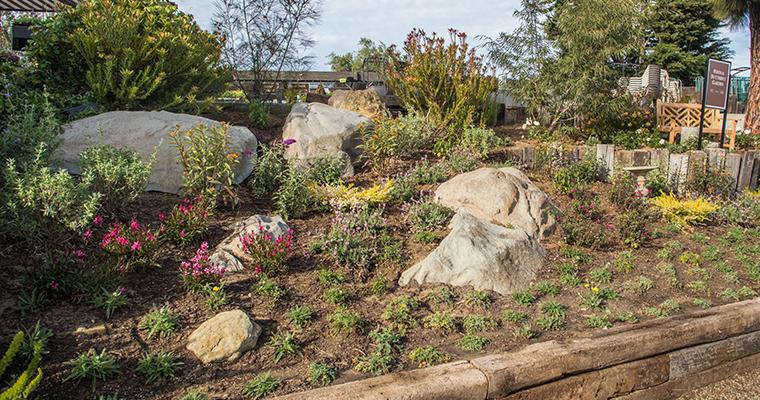 An image of the bird & butterfly garden