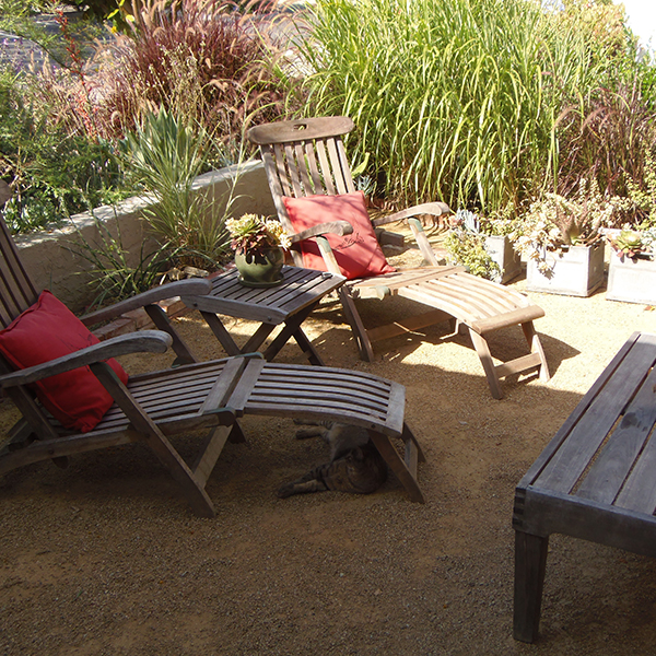 Image of Lounge Chairs in Cal Friendly Garden