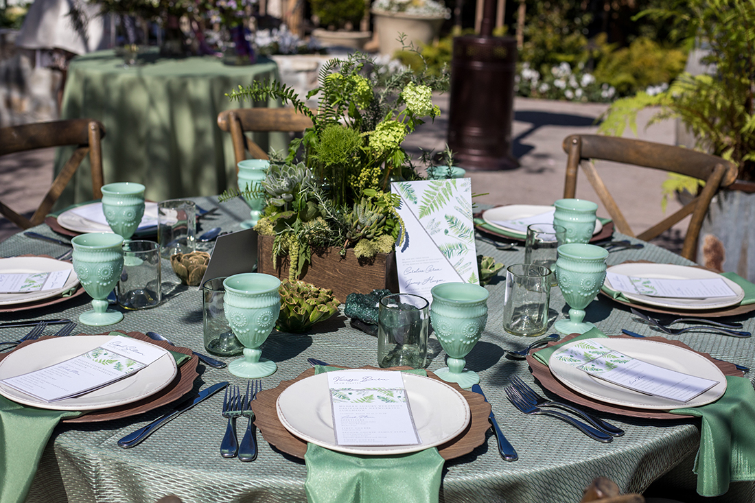 An image of a green colored dining set with a planted succulent arrangement