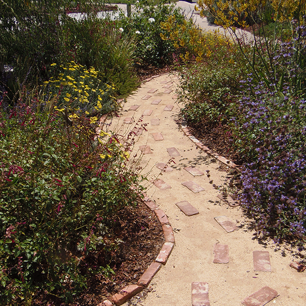 Brick Pathway in Contest Winning Garden