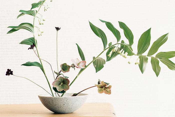 An image of a ikebana botanical inspired flower