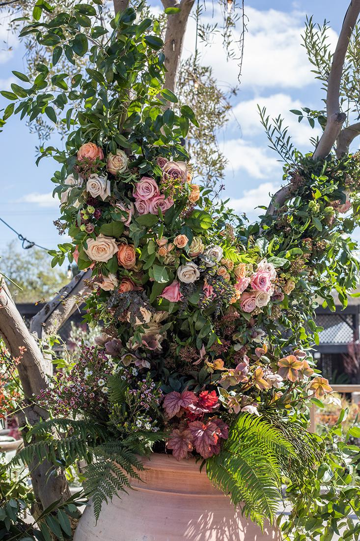Modern Luxury Roses