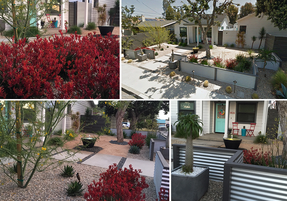 A collage of Beehler entry for California Friendly Garden Contest 2018