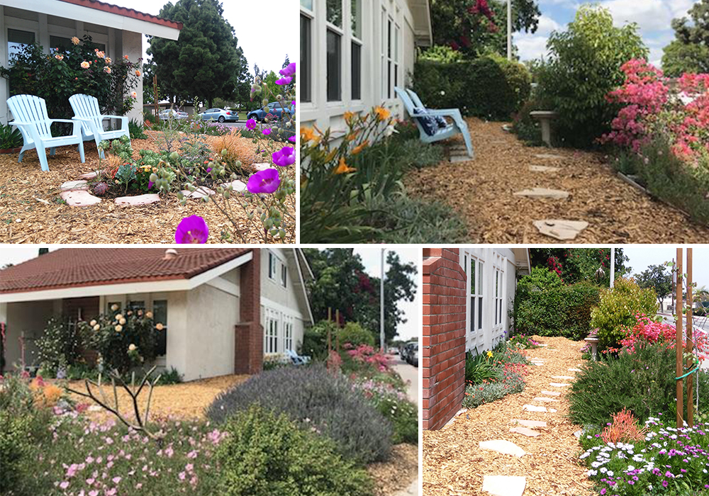 A collage of Lee entry for California Friendly Garden Contest 2018