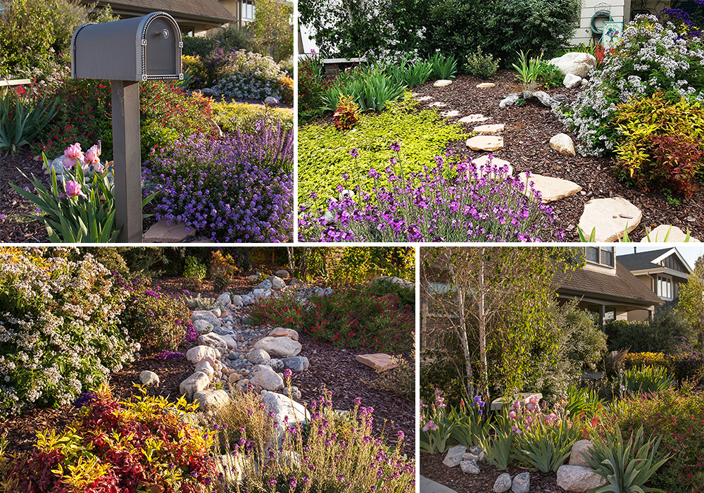 A collage of Orland entry for California Friendly Garden Contest 2018