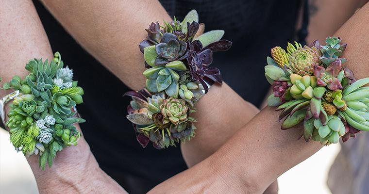 An image of a succulent bracelet