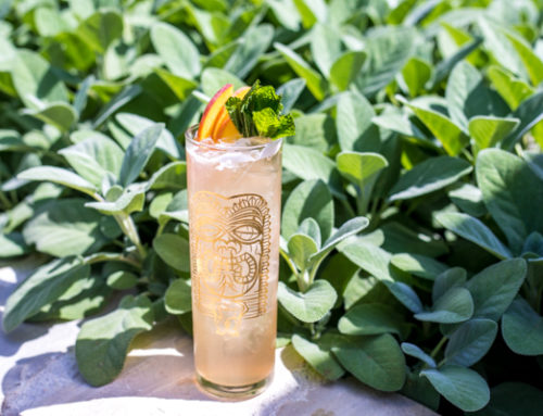 Summer Cocktail Recipe from Farmhouse