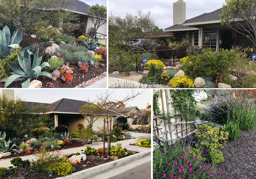A collage of Tran entry for California Friendly Garden Contest 2018