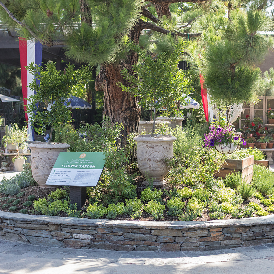An image of the sensory garden feature