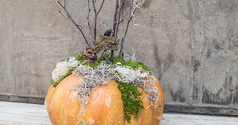An image of the prototype for the September Haunted Miniature Garden Workshop that is a spooky graveyard scene on top of a real orange pumpkin.