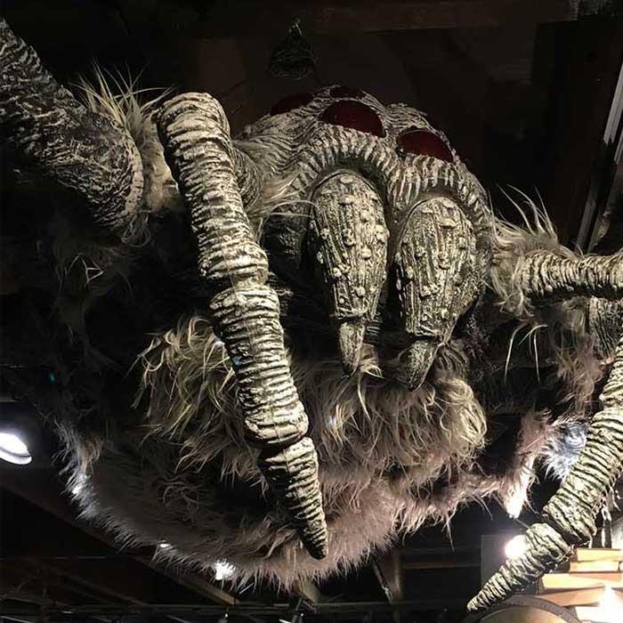 An image of Aragog for Halloween 2018