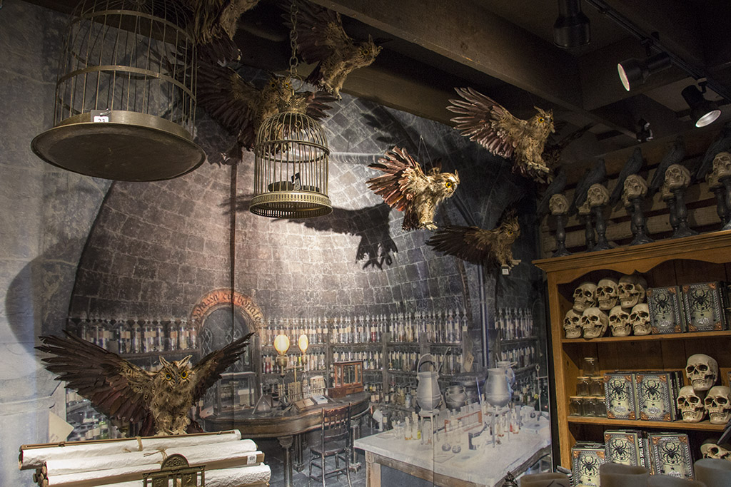 An image of owls and cages decoration for Halloween 2018