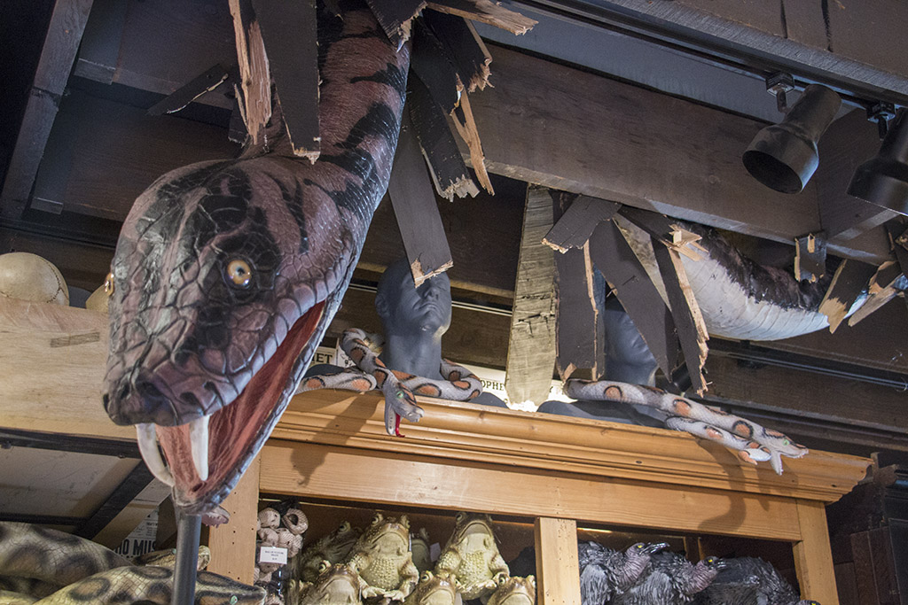 An image of a large snake coming through the ceiling for Hocus Pocus Halloween