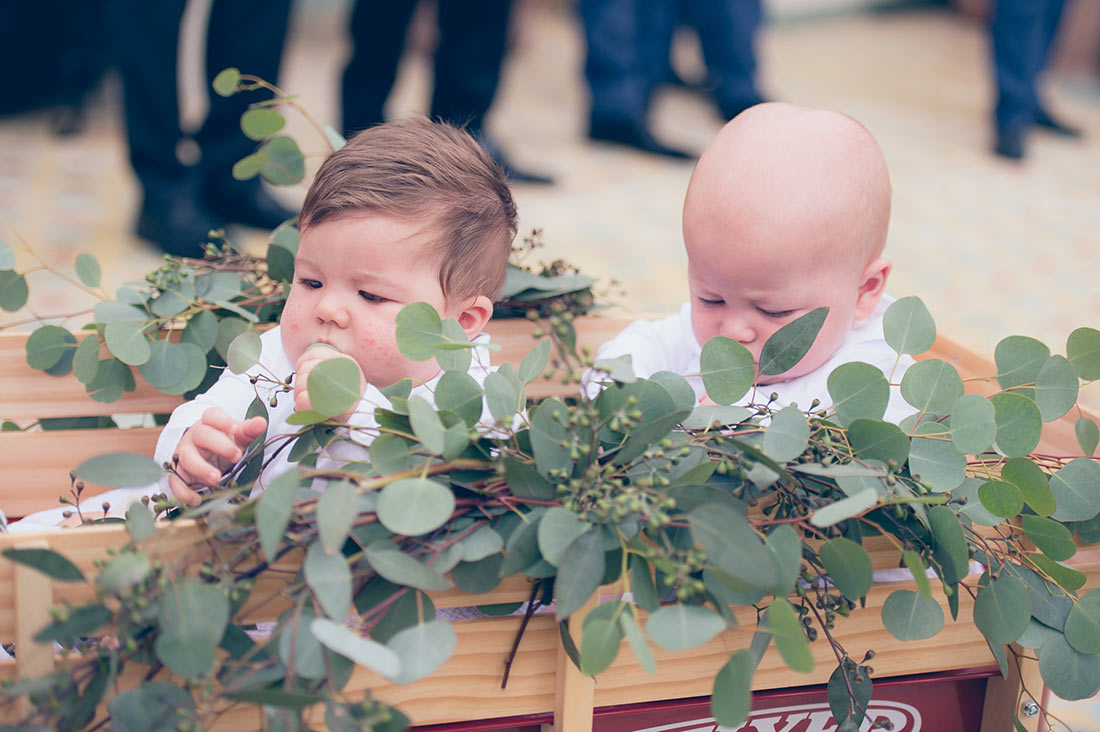An image of two infants sitting in a wagon with plants