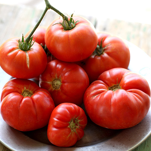 An image of multiple red tomatoes