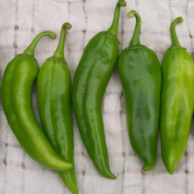 An image of a green Anaheim Pepper