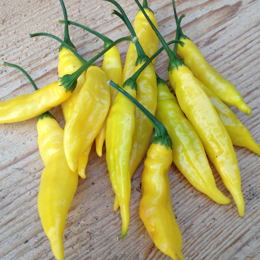 An image of yellow lemon drop peppers