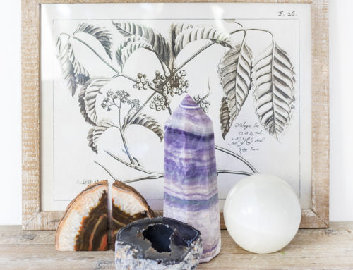 Natural Beauty – 2019 Home Décor Trend