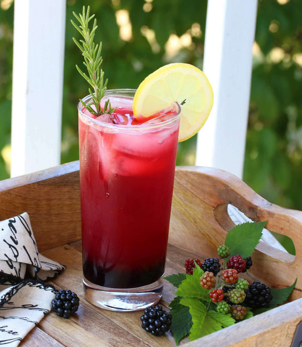 An image of a blackberry spritzer