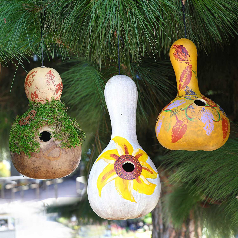 Gourd Birdhouse Workshop