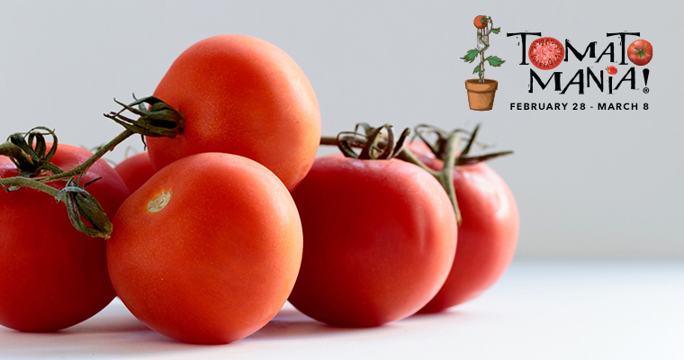 Growing Great Tomatoes with Christy Wilhelmi