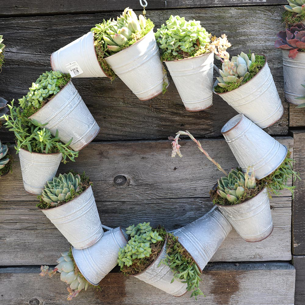 Tin Bucket Succulent Wreath