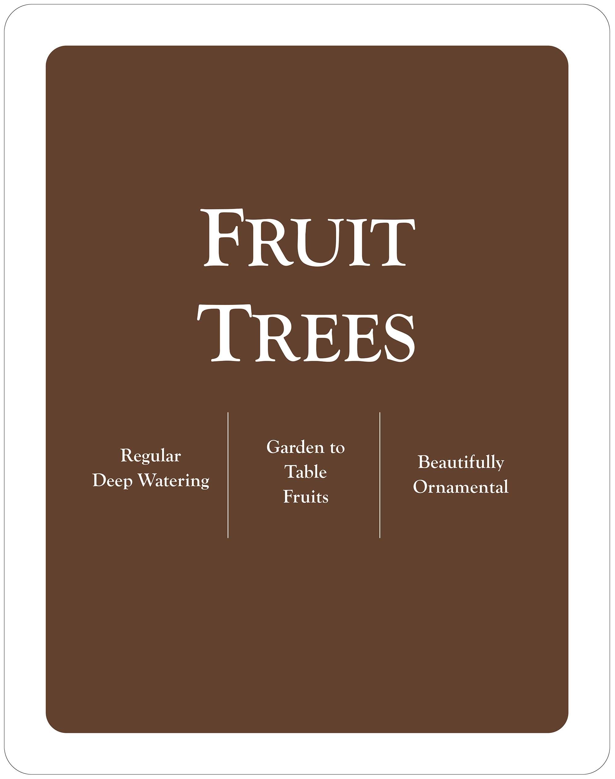 Fruit Trees-22x28