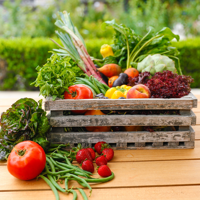 Edible Gardening Serie